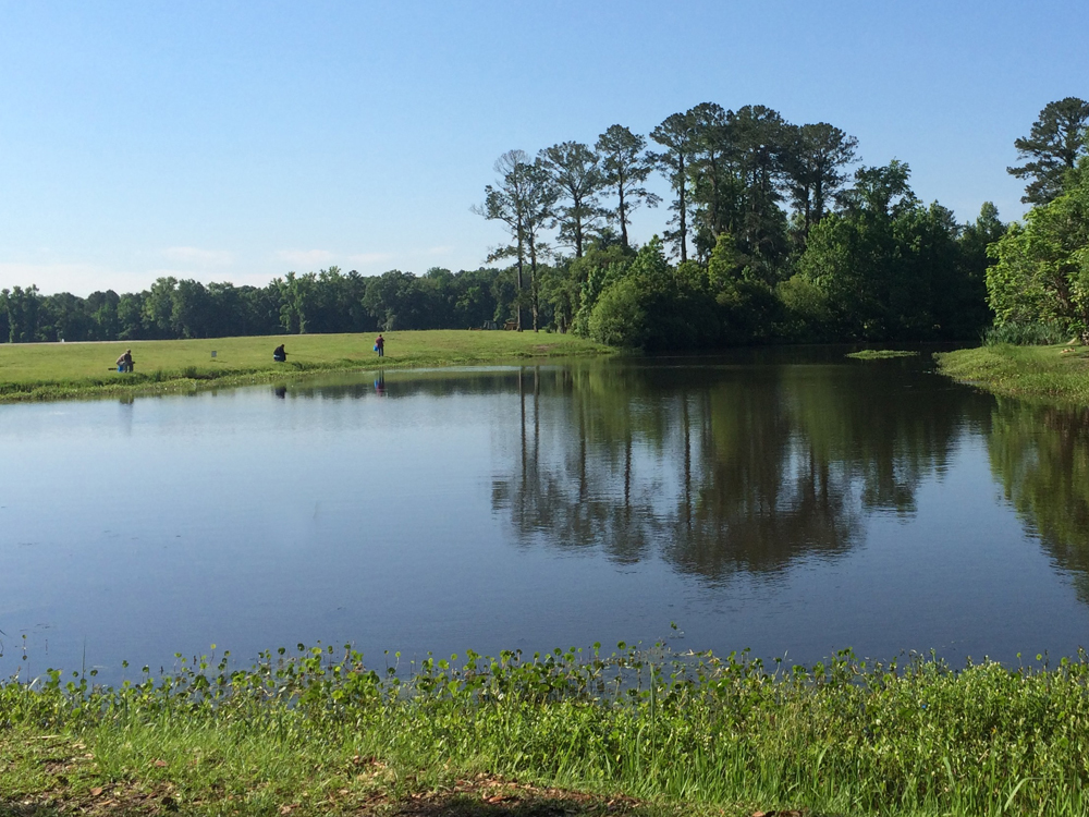 A 15-acre man-made lake in a park in Hinesville, Georgia, handles the stormwater that comes from downtown.